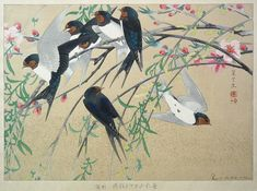 """Weeping Willow and a Flock of Barn Swallows (Mid Spring)"" #65 from the Rakuzan Kachou Gafu (100 Series) by Rakusan Tsuchiya"
