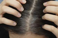 Receita natural para escurecer cabelos brancos sem sair de casa