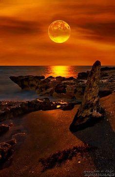 le couché du soleil à florida - landscape photography - seascape Beautiful Moon, Beautiful Sunrise, Beautiful World, Beautiful Places, Places Around The World, Around The Worlds, Cool Pictures, Beautiful Pictures, Travel Pictures