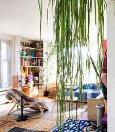Een kleurrijke oase vol kunst en wereldse verzamelingen. En waar eigen creaties zijn weg naar het doek vinden. Kijk binnen bij kunstenaar en visagist Dirk!