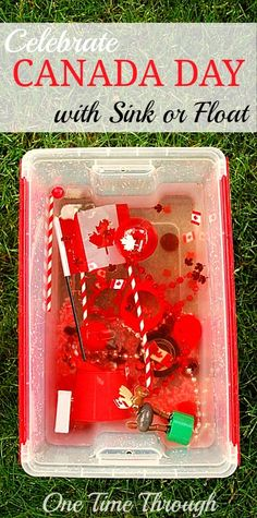 Celebrate Canada Day with Sensory Play is part of Science Symbols Activities - To celebrate Canada Day, I created 2 handson sensory bins for my son that would also provide opportunities for him to learn about our country's symbols Sensory Bins, Sensory Play, Science Activities, Toddler Activities, Canada For Kids, Canada 150, Canadian Symbols, Canada Day Fireworks, Art For Kids