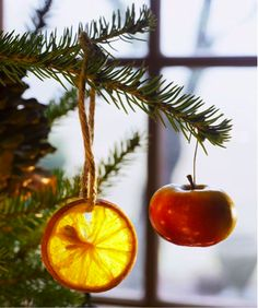 Start thinking ahead this year! These eco-friendly Christmas tree ornaments can be tossed in the compost pile after the holidays pass.
