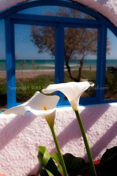 Flowers in the beach bar