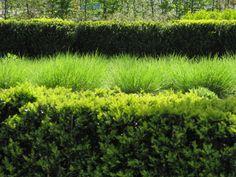 Oudolf ~ Potters Field Park, London, UK. _/\/\/\/\/\_