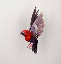 Paper birds by Diana Beltran Herrera at Pictoplasma 2014