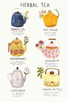 "madisonsaferillustration:""Ive been a bit under the weather. Here's a poster about medicinal herbs, many of which im using now."" madisonsaferillustration:""Ive been a bit under the weather. Here's a poster about medicinal herbs, many of which im using now. Buch Design, Tips & Tricks, Tea Blends, Book Of Shadows, High Tea, Herbal Remedies, Health Remedies, Afternoon Tea, Just In Case"