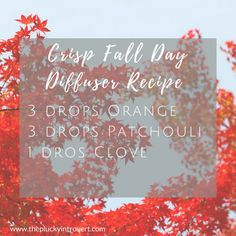 Crisp Fall Day essential oil diffuser recipe