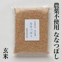 無農薬ななつぼし玄米1kg上森米殻店