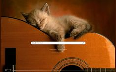 Kitty Guitar Theme from ShinySearch