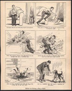 """Advise on giving a dog a bath"" / Robert Livingston Dickey / c. 1920's"
