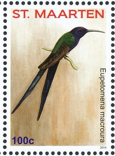 Swallow-tailed Hummingbird stamps - mainly images - gallery format