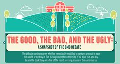 Genetically Modified Food (GMO) – The Good, The Bad and The Ugly