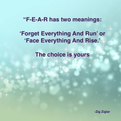 """""""F-E-A-R has two meanings: 'Forget Everything And Run' or 'Face Everything And Rise'.  The choice is yours."""" - Zig Ziglar"""