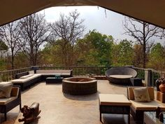 Best Jungle Lodges and Resorts India at Singinawa Jungle Lodge at Kanha National Park with luxury amenities like cottages, bungalows and other satisfactory services. Indian Pangolin, Asian Palm Civet, Mouse Deer, Jungle Resort, Sloth Bear, Jungle Cat, Leopard Cat, Vampire Bat, Honey Badger