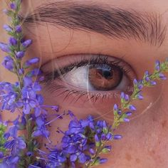 Aesthetic Eyes, Aesthetic Makeup, Aesthetic Photo, Aesthetic Girl, Aesthetic Pictures, Aesthetic Vintage, Lavender Aesthetic, Flower Aesthetic, Purple Aesthetic