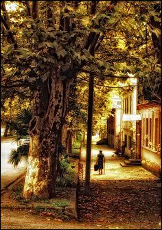 Abhazia (Suhum) 09/2010