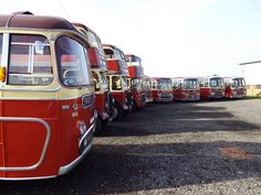https://flic.kr/p/pS1yRQ | NABS Preserved Barton Vehicle  collection at Ruddington. 866,507,580,854,54,966,1146,517&1286.   There are a few others that are not here that are owned by other groups...