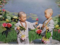 http://wtthome.blog.sohu.com/rss