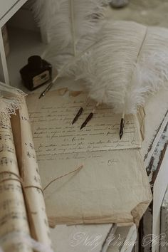 Feather quill pens and ink_ Decoration Shabby, Old Letters, Handwritten Letters, Lost Art, Penmanship, Letter Writing, Writing Desk, Mail Art, Vintage Love