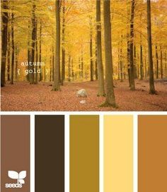 Autumn Gold #color palette #neutral