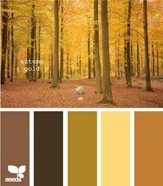 Color Palettes On Pinterest Fall Color Palette Color