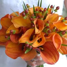 Orange calla lily wedding bouquets Keep the style simple and natural and try not to cross the line with the ribbons and greeneries. If you wish to make the orange calla lily wedding bouquet look ev… Fall Wedding Bouquets, Fall Wedding Flowers, Wedding Flower Arrangements, Bridesmaid Flowers, Fall Flowers, Wedding Bridesmaids, Bridal Flowers, Orange Flowers, Bridal Bouquets