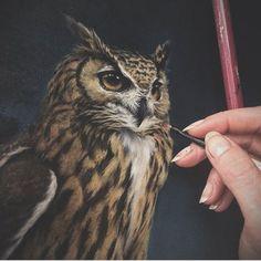 #inspiration du jour : @vanessafoley - #art #owl #draw #drawing #artist #wicksandbeans #paint