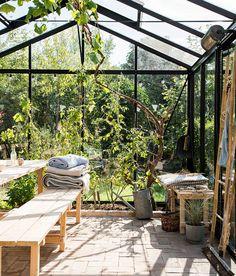 backyard designs – Gardening Ideas, Tips & Techniques Terrace Garden, Garden Spaces, Indoor Garden, Indoor Outdoor Living, Outdoor Spaces, Outdoor Decor, Pergola, Shed Interior, Turbulence Deco