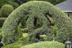 Pearl Fryar Topiary Garden Bishopville, SC