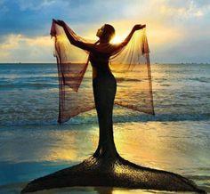 Sirena ... ¡También ellas bailan con velo!