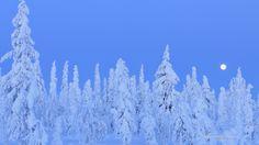 Winter Moon, Scandinavia