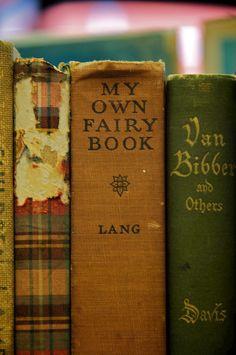 my own fairy book
