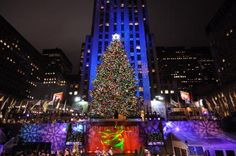 See the World's Most Famous Christmas Tree in Rockefeller Center