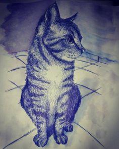 Kugelschreiber-Zeichnung Katze