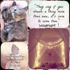 ☮ * ° ♥ ˚ℒℴѵℯ cjf Night Time, Good Night, Good Morning, Goeie Nag, Kindness Quotes, Special Quotes, Quote Board, Afrikaans, Nature Pictures