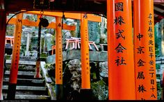 https://flic.kr/p/qpj3uj | Kyoto | Kyoto, view of a small sanctuary along the gallery of Torii inside the shintoist shrine of Fujimi Inari Taisha. Torii are the red arches situated at the entrance of a Shintoist Shrine