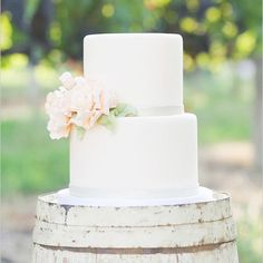 From southern styled simple wedding cakes to rustic wedding cakes with a dash of loveliness, check out our top 7 sweet and simple wedding cake inspiration ideas!