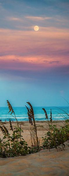 Pic of the Day...Fool Moon Risin' ----------- #beach #tropics #beautiful #sunset #moon