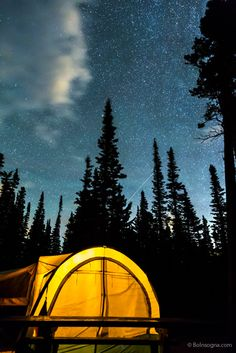 "Striking Photography by Bo Insogna posted a photo:  Summertime camping under the stars in the Colorado Rocky mountains, nestled in a wilderness forest taking in the heavens above with falling star.  iGallery Prints, digital downloads and more - boinsogna.com/featured/star-camping-james-bo-insogna.html  For more please like, subscribe, follow and share. Very much appreciated!  Photo: © James ""Bo"" Insogna"
