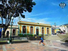 Te presentamos la selección del día: <<CARAQUEÑOS>> en Caracas Entre Calles. ============================ F E L I C I D A D E S >> @a.torres.13 << Visita su galeria ============================ SELECCIÓN @floriannabd TAG #CCS_EntreCalles ================ Team: @ginamoca @huguito @luisrhostos @mahenriquezm @teresitacc @marianaj19 @floriannabd ================ #caraqueños #Caracas #Venezuela #LaPastora #Increibleccs #Instavenezuela #Gf_Venezuela #GaleriaVzla #Ig_GranCaracas #Ig_Venezuela…