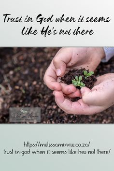 Sow your seeds