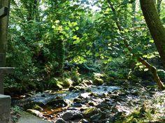 River Taw, Sticklepath
