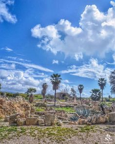 The Roman Ruins of #Tyre in a breathtaking shot By @hasnafrangieh #WeAreLebanon  #Lebanon