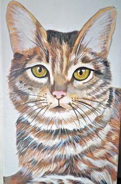 cat oil on canvas dec 2013