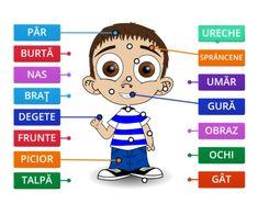 Joc - Schema corporală - Logorici Education, Comics, Boys, Fictional Characters, Baby Boys, Cartoons, Onderwijs, Senior Boys, Fantasy Characters