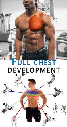 Full Chest Development 👇 CHEST Development Full lifestyle is part of Chest workouts - Chest Workout For Men, Chest Workouts, Workout Women, Planet Fitness, Body Fitness, Workout Fitness, Fitness Diet, Gym Workout Videos, Gym Workouts