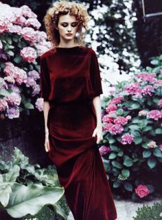 floral .. velvet.. beauty  via Laura Whalley