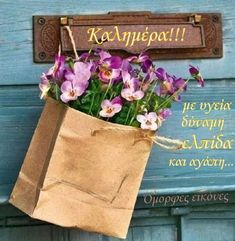 Greek Quotes, Reusable Tote Bags, Photos, Pictures
