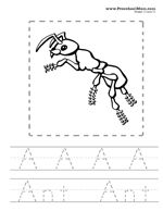 A Set Of Realistic Coloring Pages Australian Animals One For Each Letter The