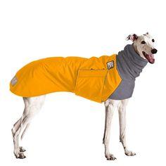 Greyhound Dog Winter Coat (Yellow Coat with Grey Hood)